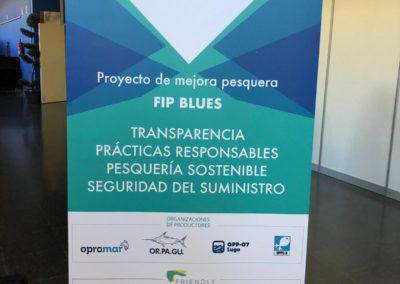 FIP BLUES 1