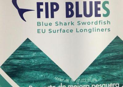 FIP BLUES 9