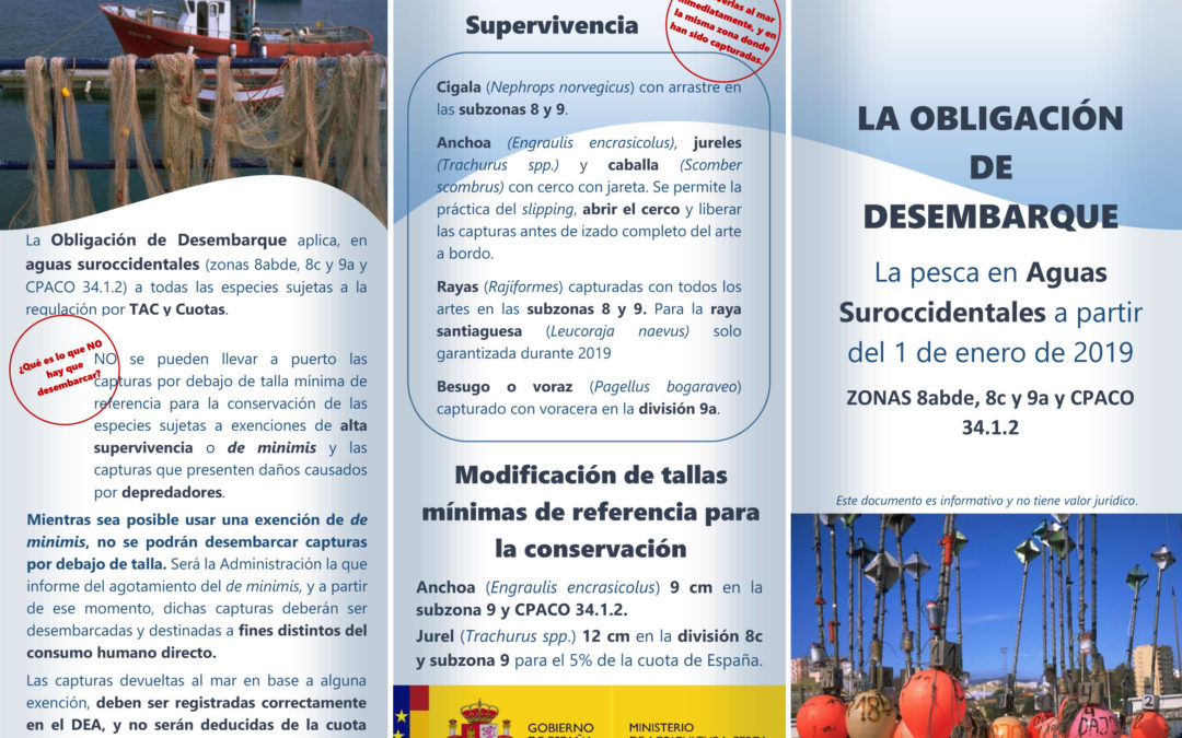 OBLIGACIÓN DESEMBARQUE TOTAL DESDE EL 1 DE ENERO DE 2019