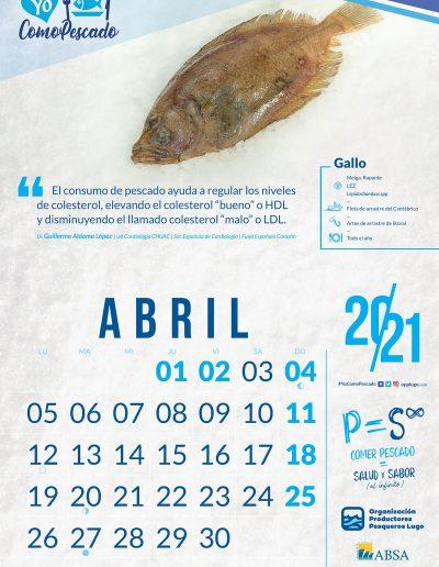 OPP72021_CALENDARIO_WEB_04
